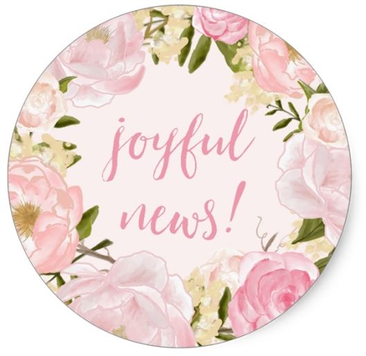 Watercolor Roses Joyful News Birth Announcement Envelope Seal Stickers